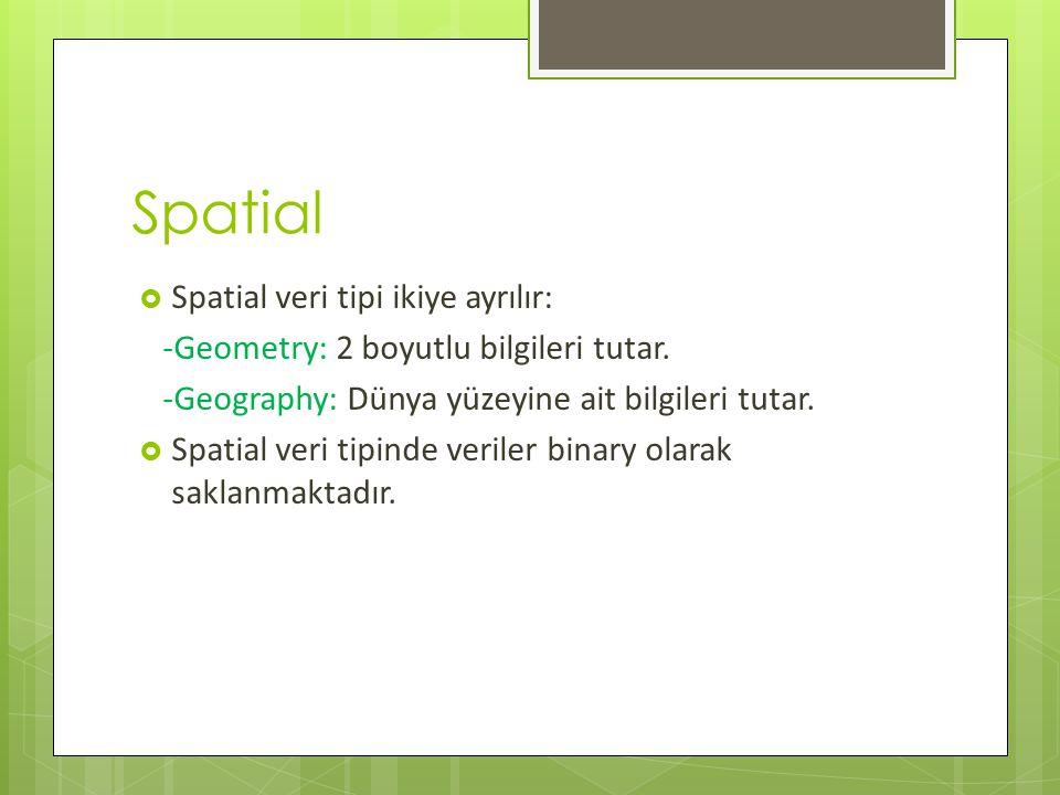 Spatial Spatial veri tipi ikiye ayrılır: