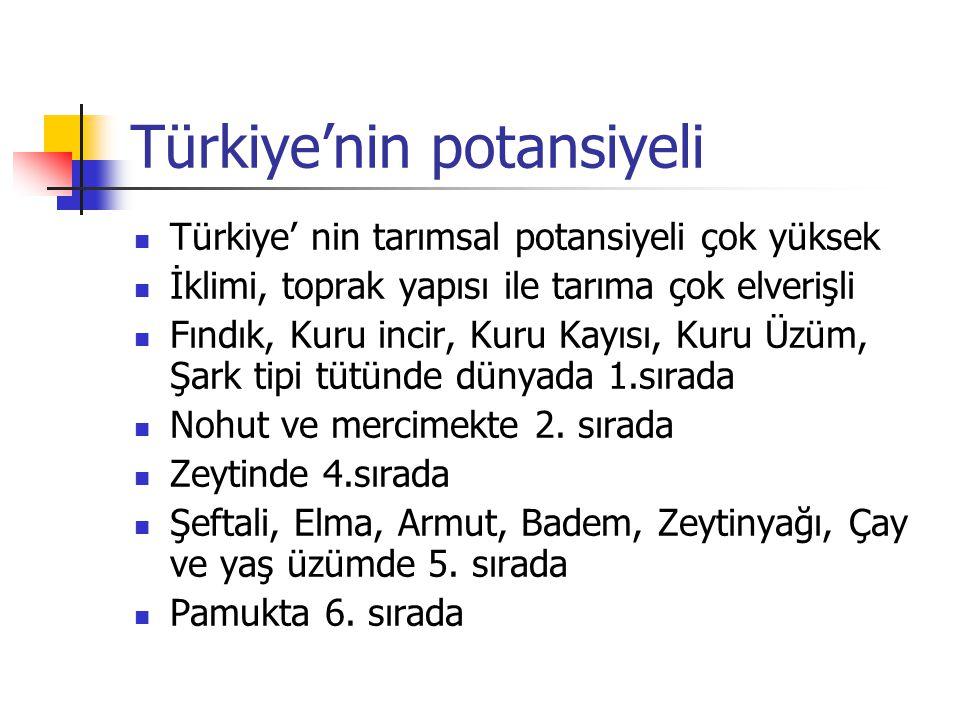 Türkiye'nin potansiyeli