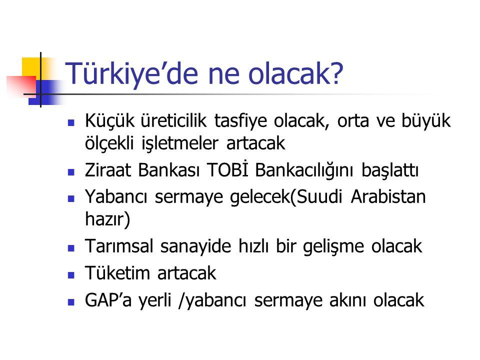Türkiye'de ne olacak Küçük üreticilik tasfiye olacak, orta ve büyük ölçekli işletmeler artacak. Ziraat Bankası TOBİ Bankacılığını başlattı.