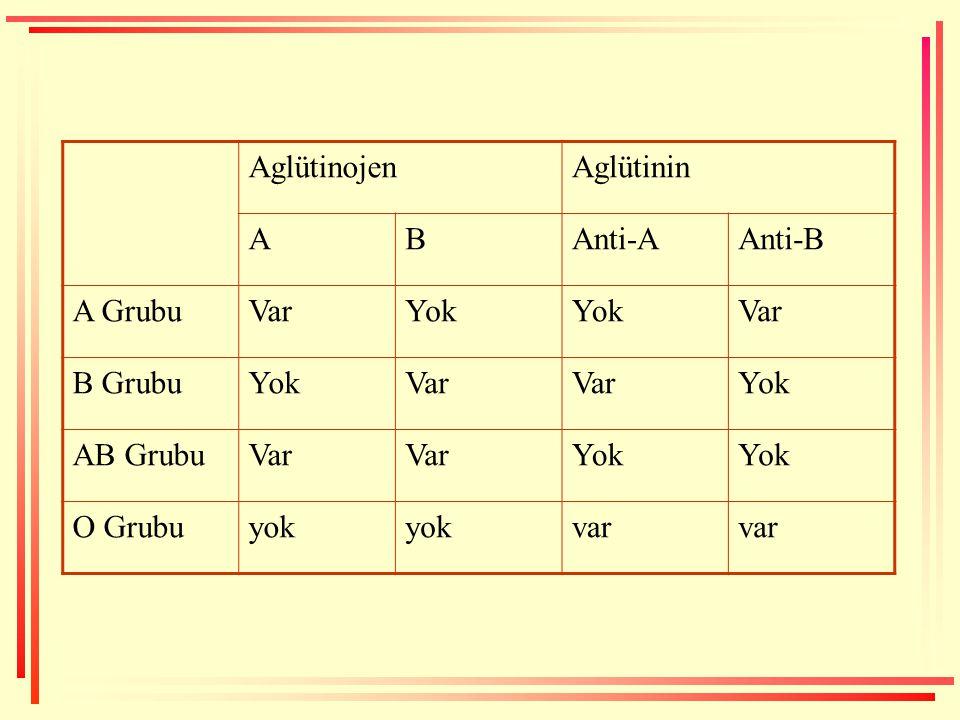 Aglütinojen Aglütinin A B Anti-A Anti-B A Grubu Var Yok B Grubu AB Grubu O Grubu yok var