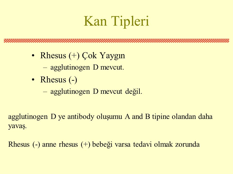Kan Tipleri Rhesus (+) Çok Yaygın Rhesus (-) agglutinogen D mevcut.