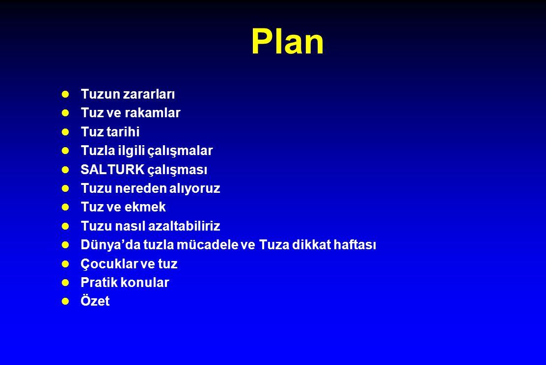 Plan Tuzun zararları Tuz ve rakamlar Tuz tarihi