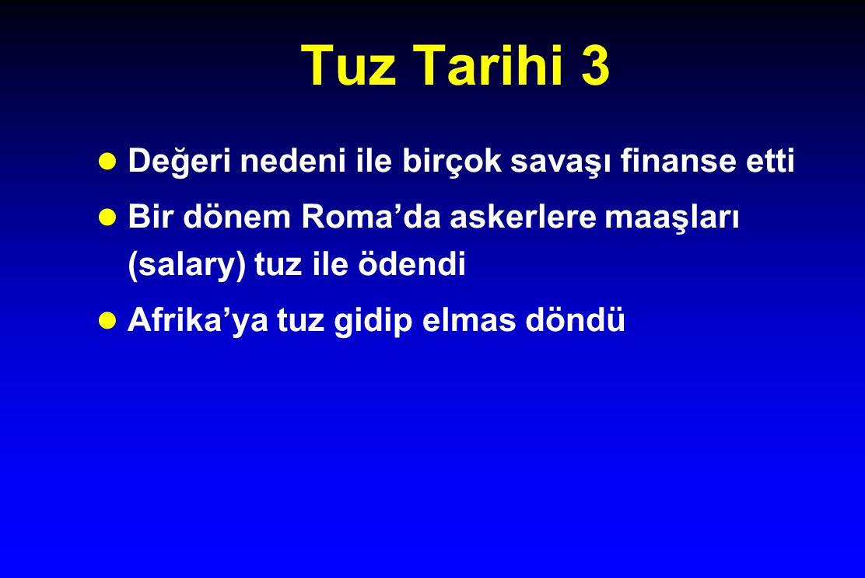 Tuz Tarihi 3 Değeri nedeni ile birçok savaşı finanse etti