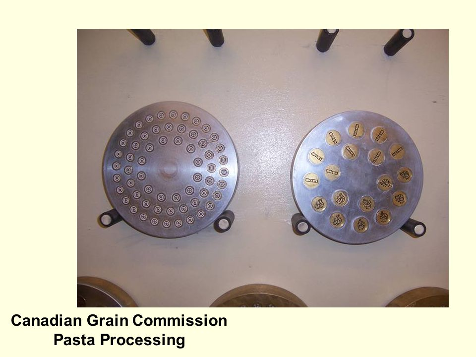Canadian Grain Commission