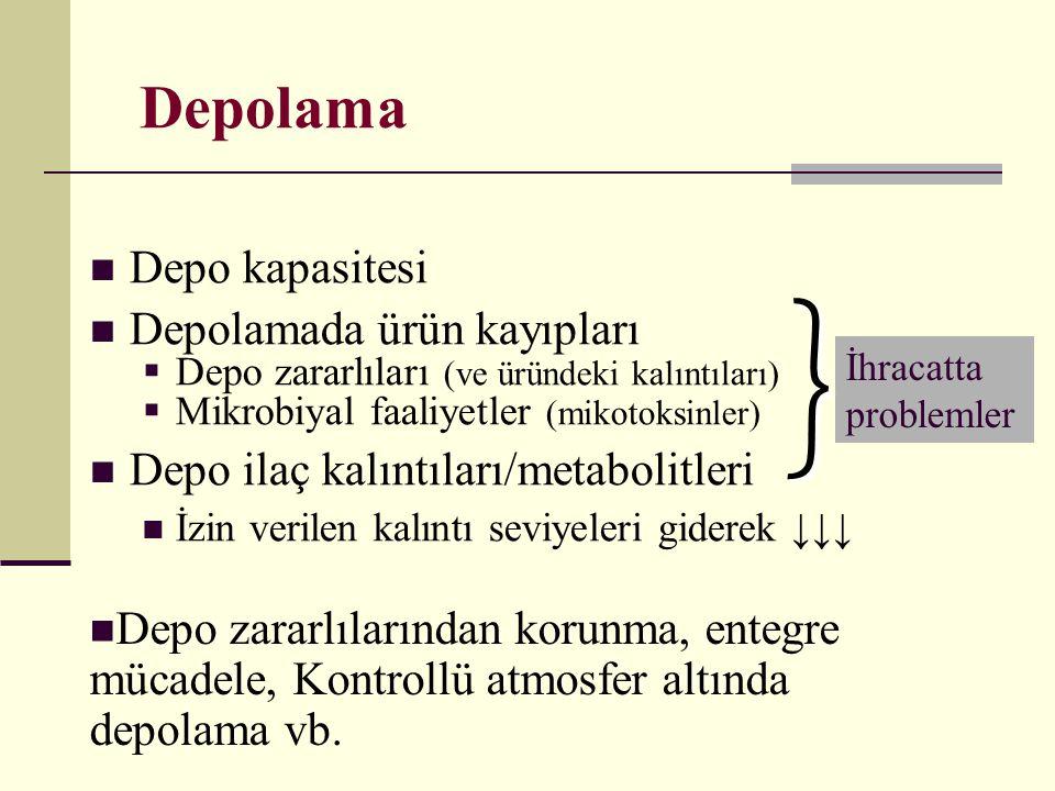 } Depolama Depo kapasitesi Depolamada ürün kayıpları