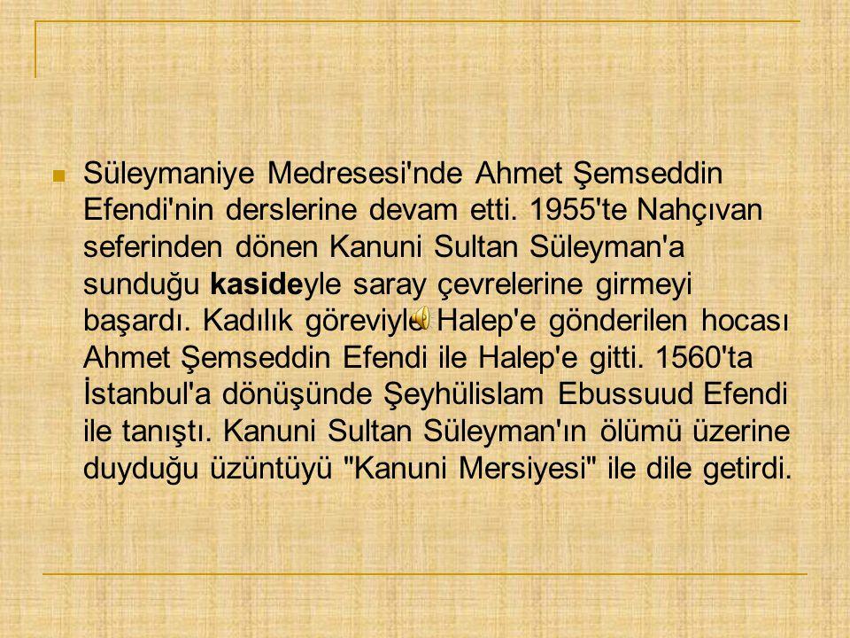 Süleymaniye Medresesi nde Ahmet Şemseddin Efendi nin derslerine devam etti.