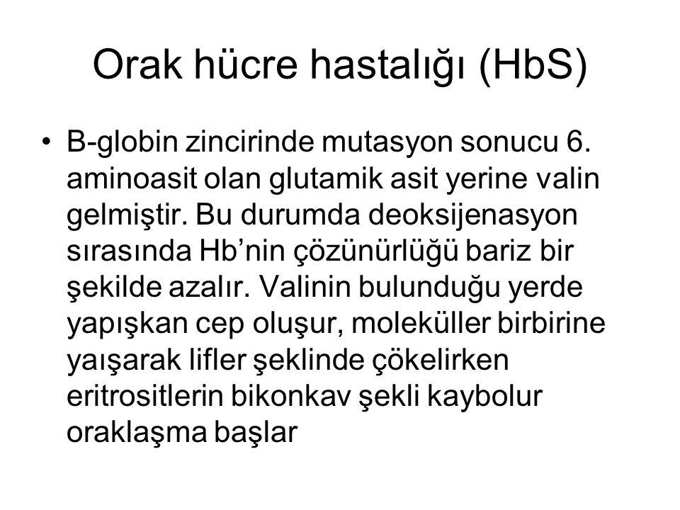 Orak hücre hastalığı (HbS)