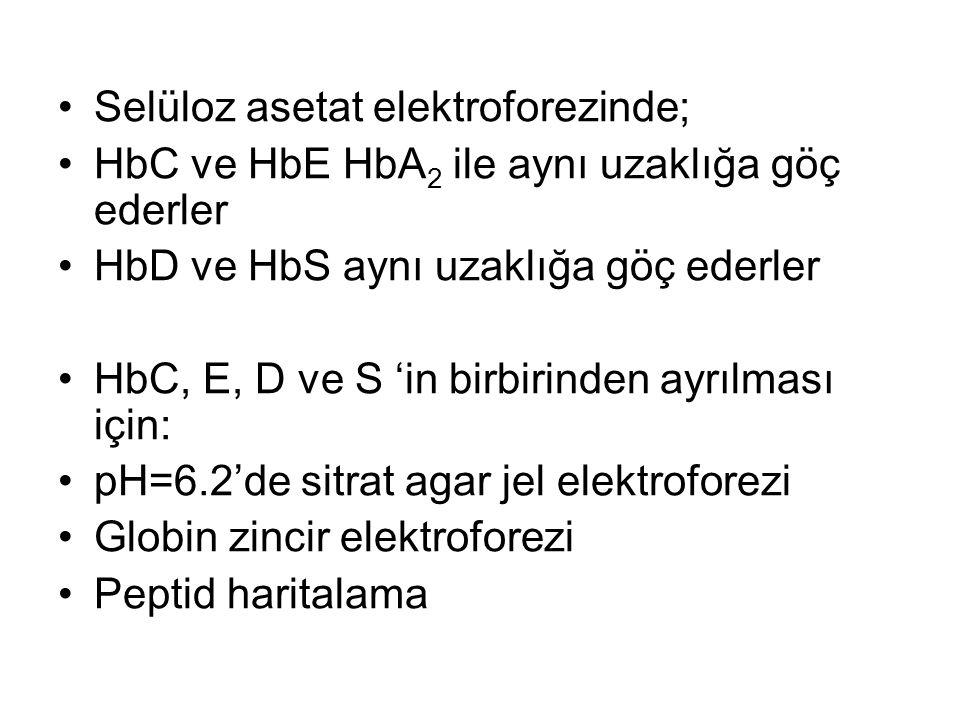 Selüloz asetat elektroforezinde;
