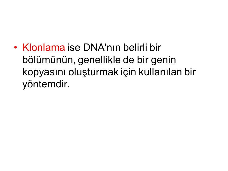 Klonlama ise DNA nın belirli bir bölümünün, genellikle de bir genin kopyasını oluşturmak için kullanılan bir yöntemdir.