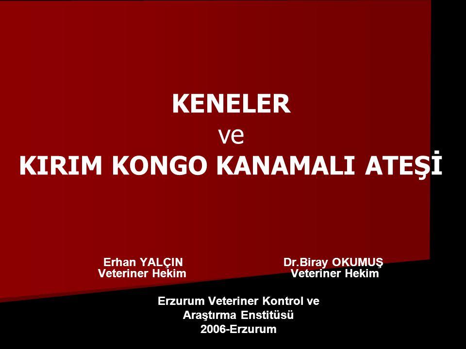 KENELER ve KIRIM KONGO KANAMALI ATEŞİ
