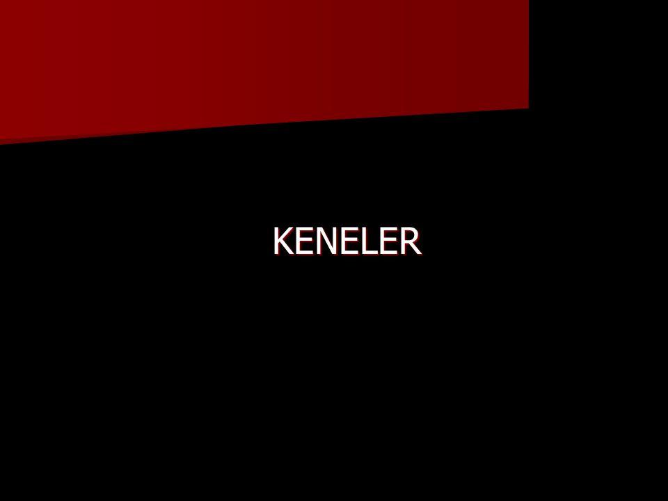 KENELER