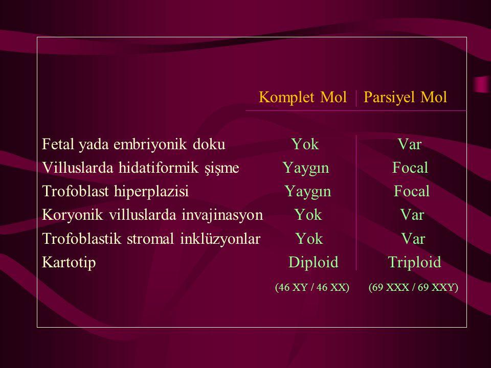 Komplet Mol Parsiyel Mol