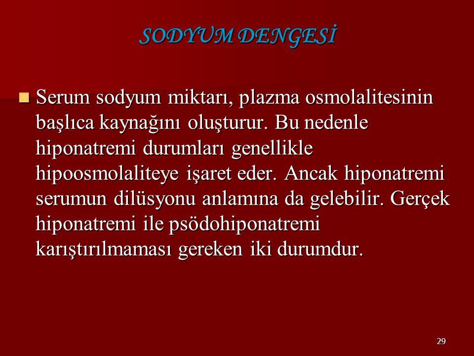 SODYUM DENGESİ