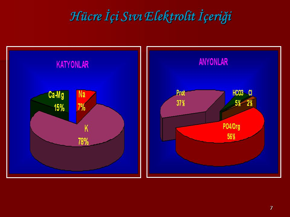 Hücre İçi Sıvı Elektrolit İçeriği