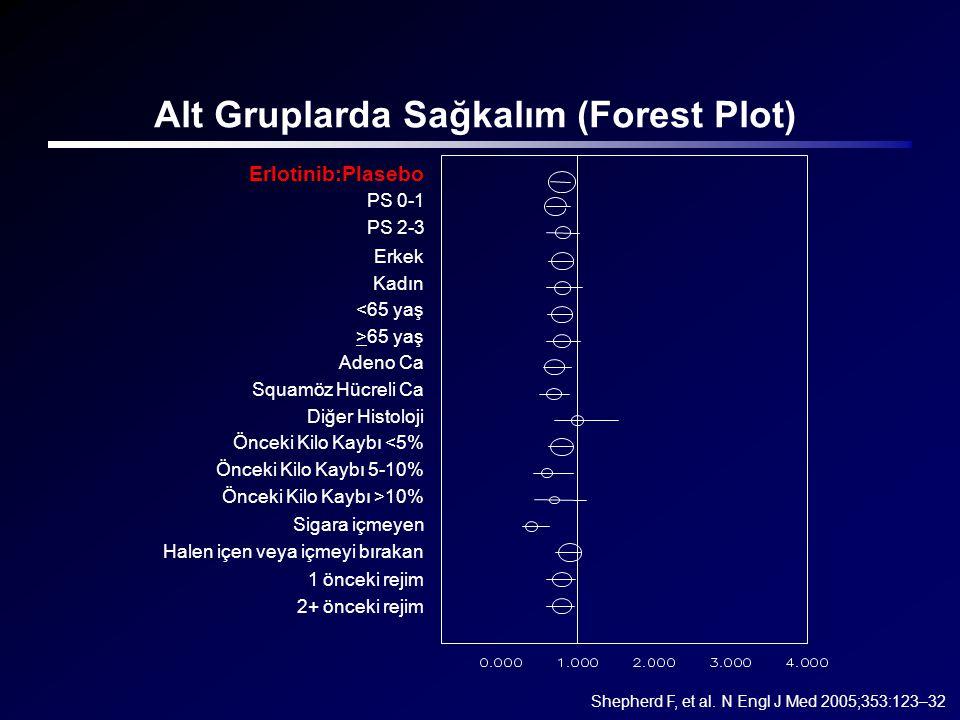 Alt Gruplarda Sağkalım (Forest Plot)