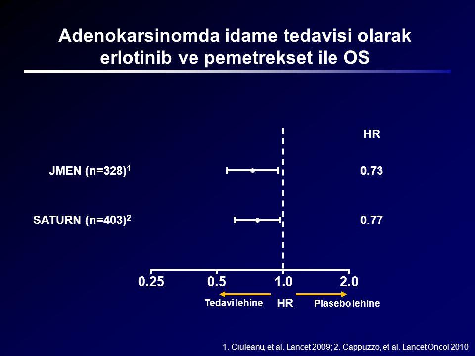 Adenokarsinomda idame tedavisi olarak erlotinib ve pemetrekset ile OS