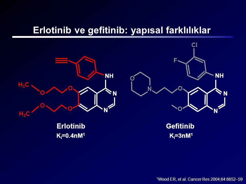 Erlotinib ve gefitinib: yapısal farklılıklar