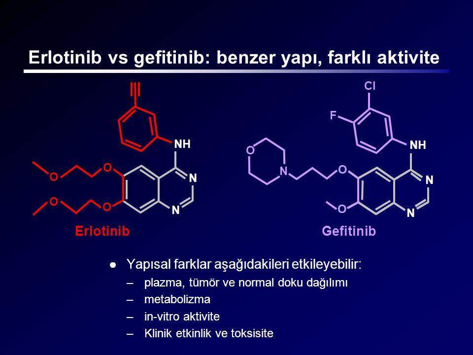 Erlotinib vs gefitinib: benzer yapı, farklı aktivite