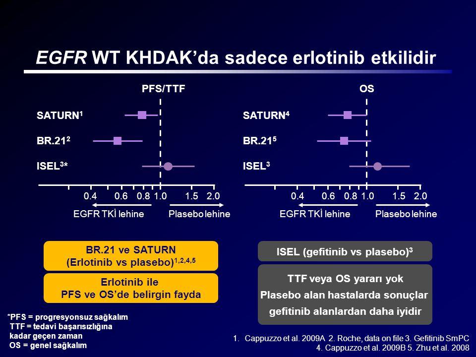 EGFR WT KHDAK'da sadece erlotinib etkilidir