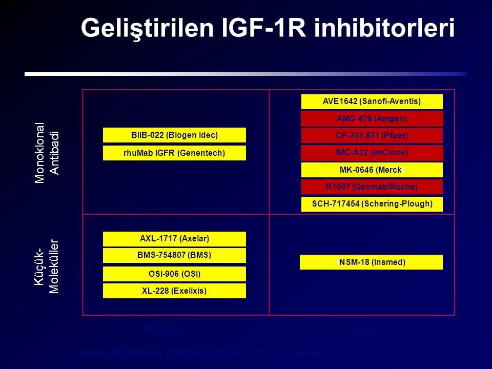 Geliştirilen IGF-1R inhibitorleri