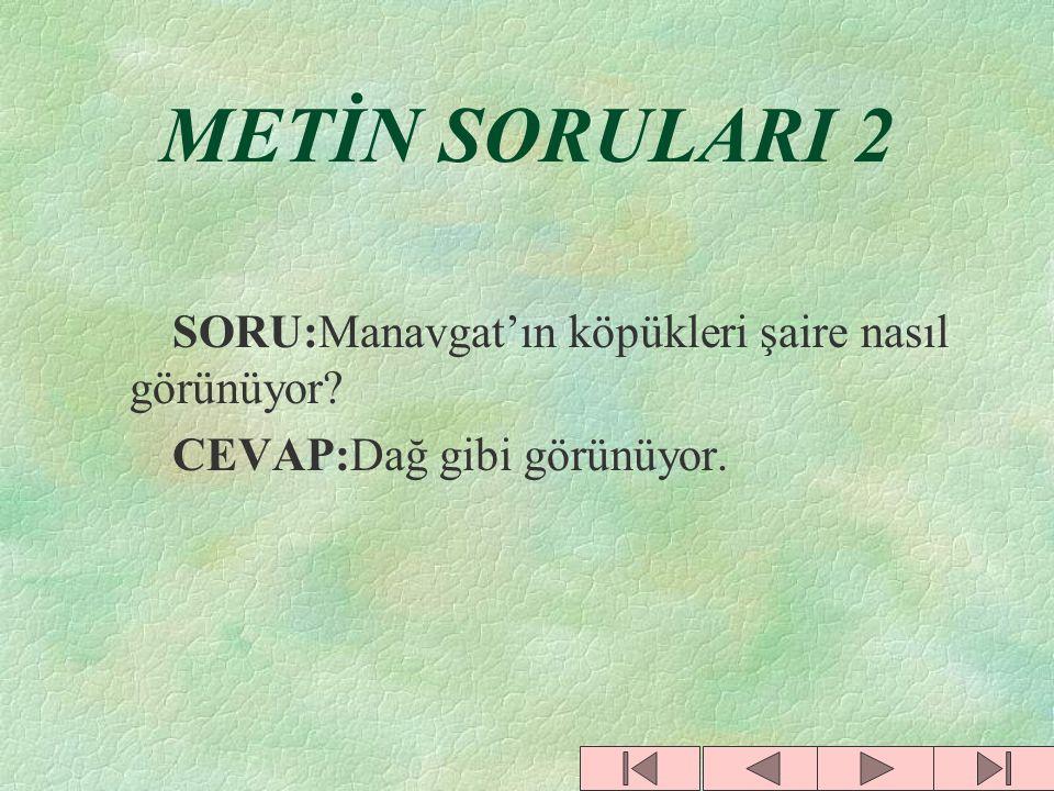 METİN SORULARI 2 SORU:Manavgat'ın köpükleri şaire nasıl görünüyor