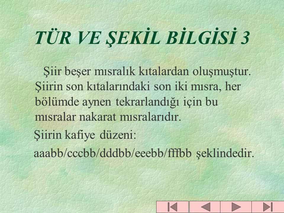 TÜR VE ŞEKİL BİLGİSİ 3