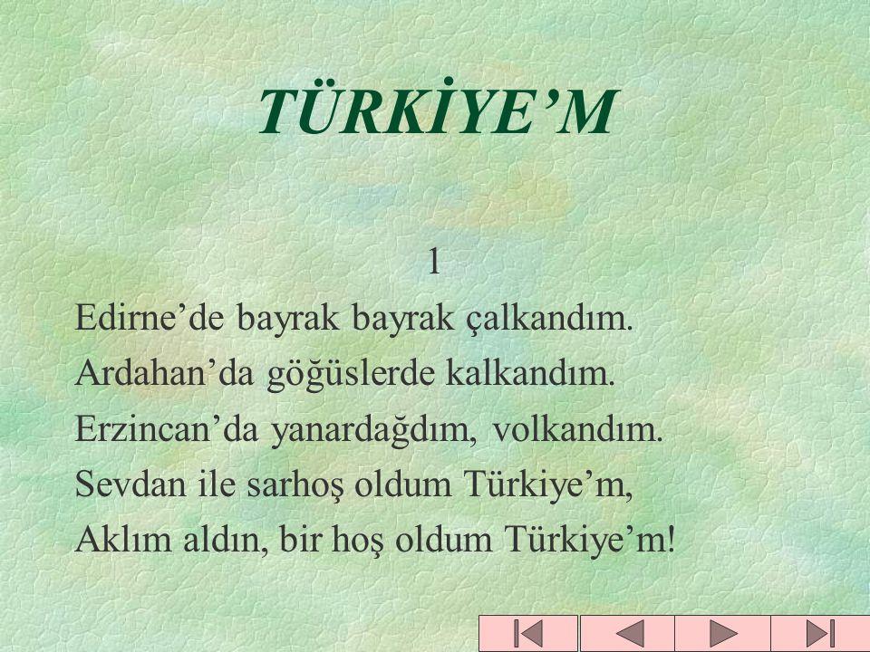 TÜRKİYE'M 1 Edirne'de bayrak bayrak çalkandım.