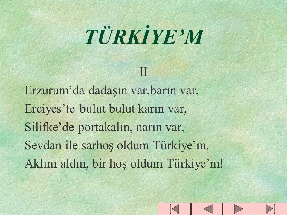 TÜRKİYE'M II Erzurum'da dadaşın var,barın var,