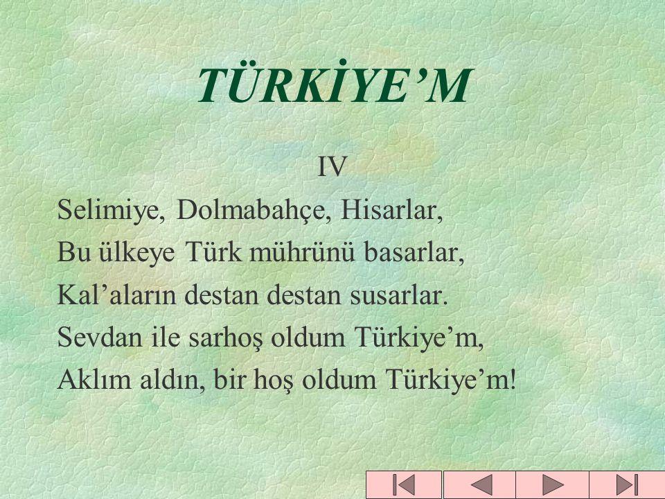 TÜRKİYE'M IV Selimiye, Dolmabahçe, Hisarlar,