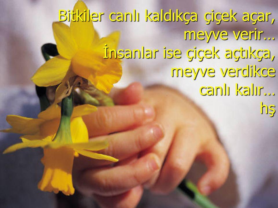 Bitkiler canlı kaldıkça çiçek açar, meyve verir… İnsanlar ise çiçek açtıkça, meyve verdikce canlı kalır… hş