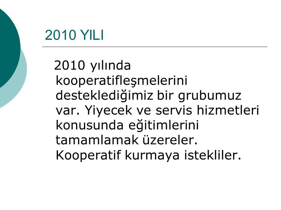 2010 Yılında Ne Yaptık