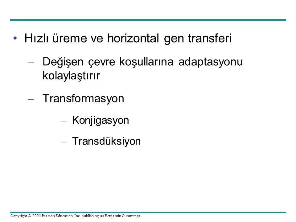Hızlı üreme ve horizontal gen transferi