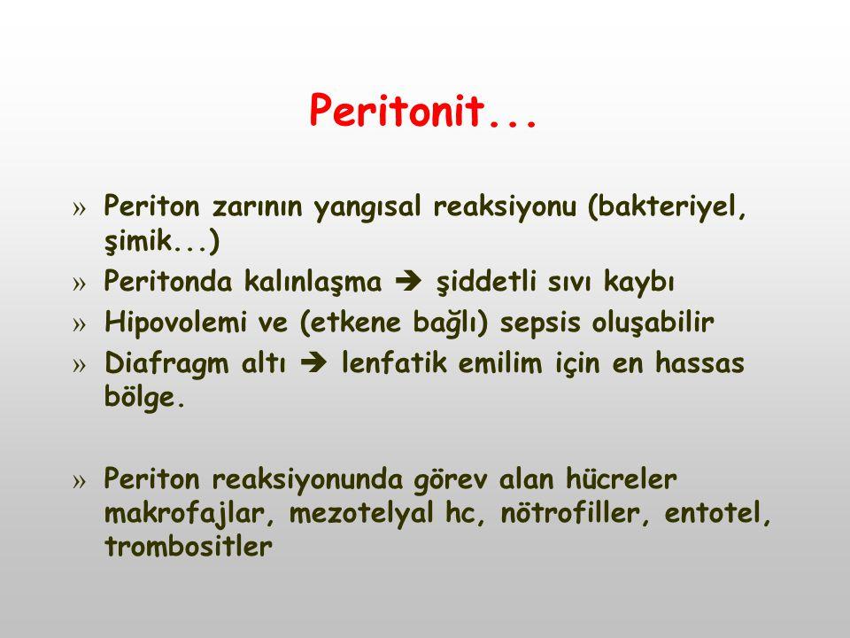 Peritonit... Periton zarının yangısal reaksiyonu (bakteriyel, şimik...) Peritonda kalınlaşma  şiddetli sıvı kaybı.