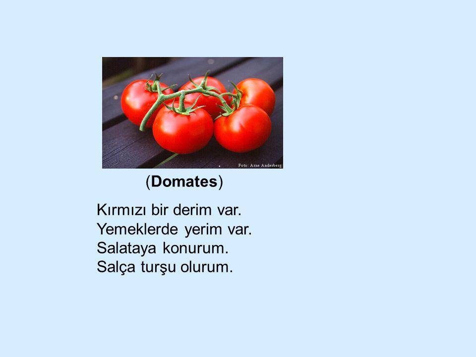 (Domates) Kırmızı bir derim var. Yemeklerde yerim var. Salataya konurum. Salça turşu olurum.