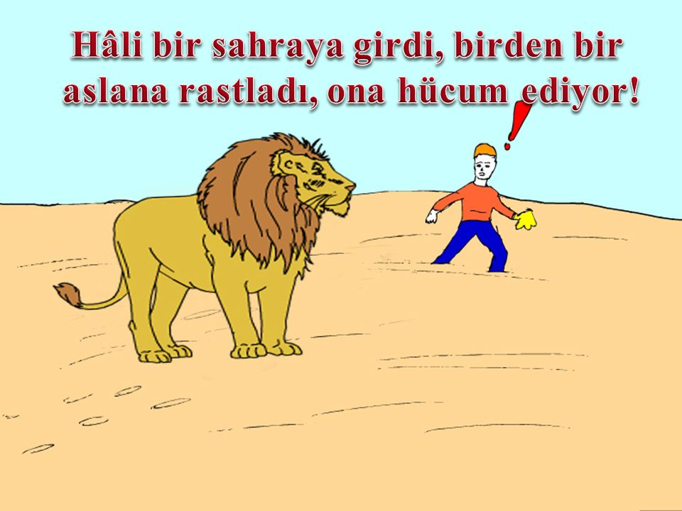 Hâli bir sahraya girdi, birden bir aslana rastladı, ona hücum ediyor!