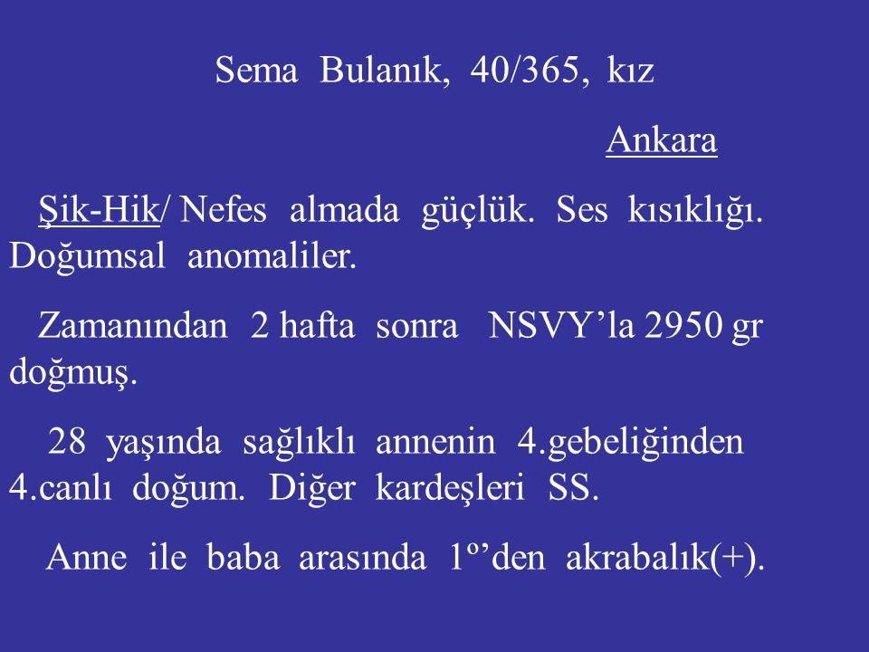 Sema Bulanık, 40/365, kız Ankara. Şik-Hik/ Nefes almada güçlük. Ses kısıklığı. Doğumsal anomaliler.