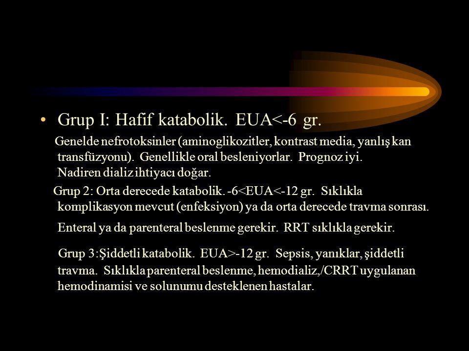 Grup I: Hafif katabolik. EUA<-6 gr.