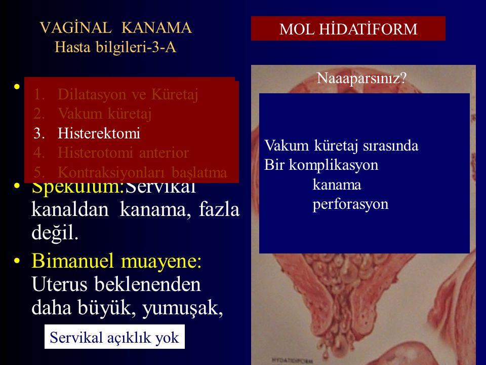 VAGİNAL KANAMA Hasta bilgileri-3-A