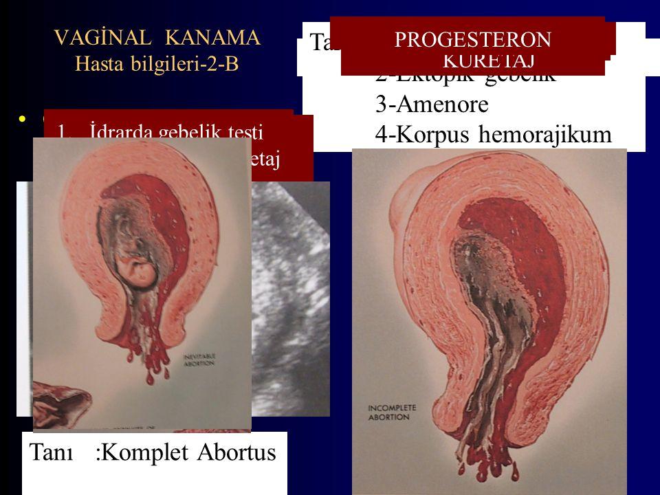 VAGİNAL KANAMA Hasta bilgileri-2-B