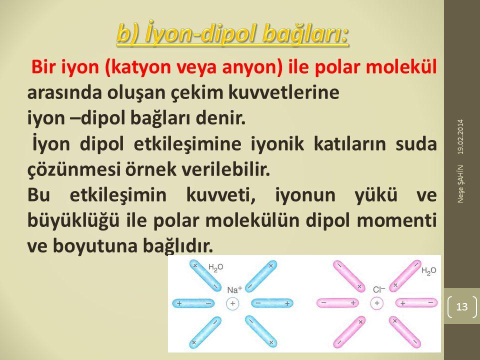 b) İyon-dipol bağları: