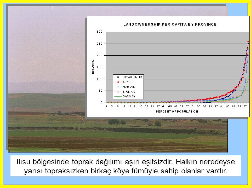 Ilısu bölgesinde toprak dağılımı aşırı eşitsizdir