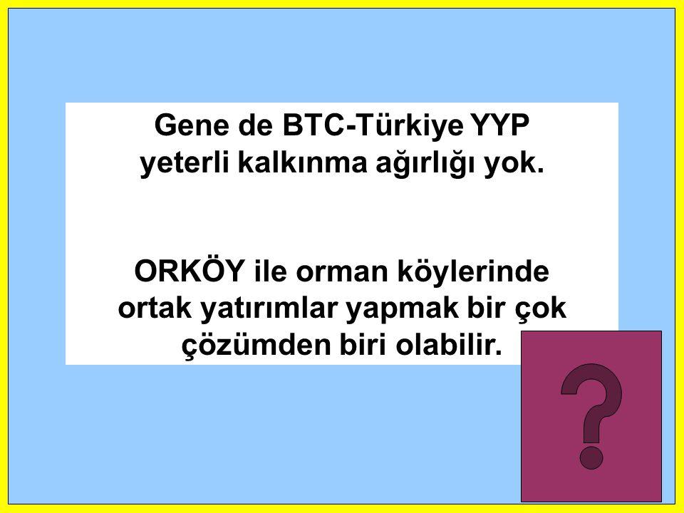 Gene de BTC-Türkiye YYP yeterli kalkınma ağırlığı yok.