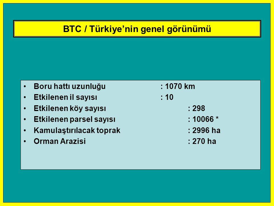 BTC / Türkiye'nin genel görünümü