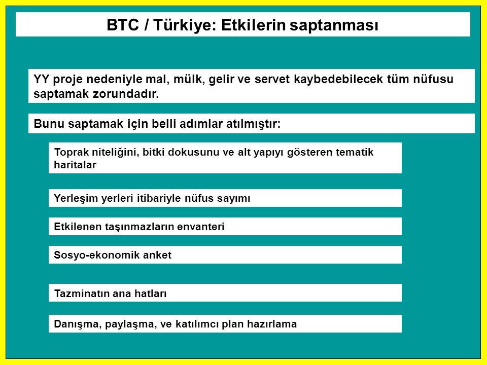 BTC / Türkiye: Etkilerin saptanması