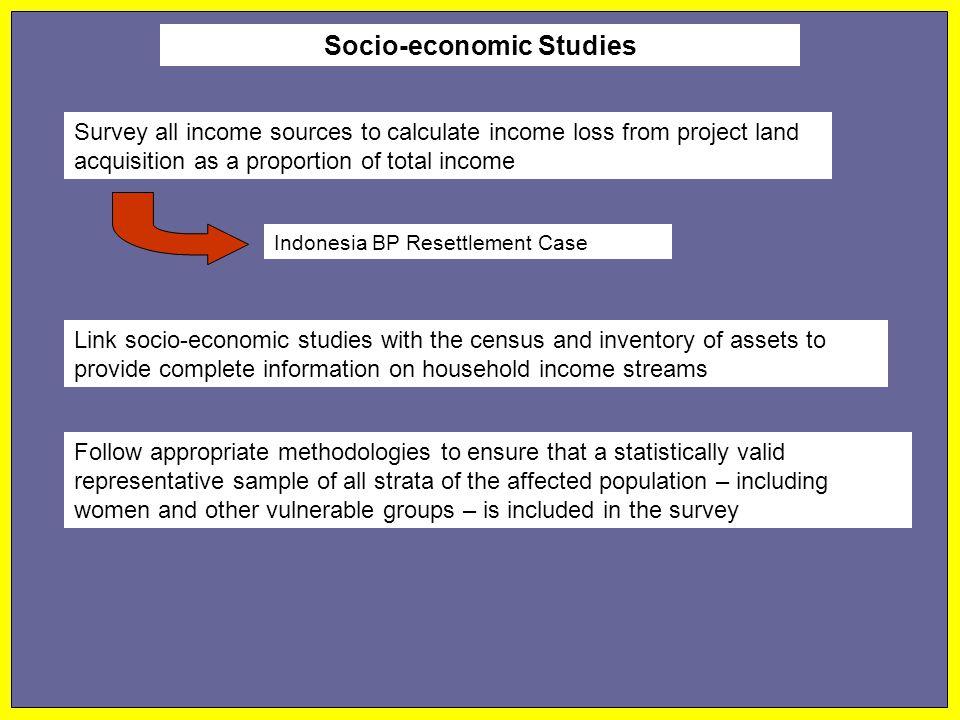 Socio-economic Studies