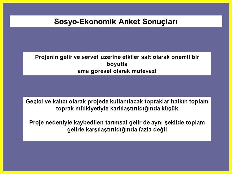 Sosyo-Ekonomik Anket Sonuçları