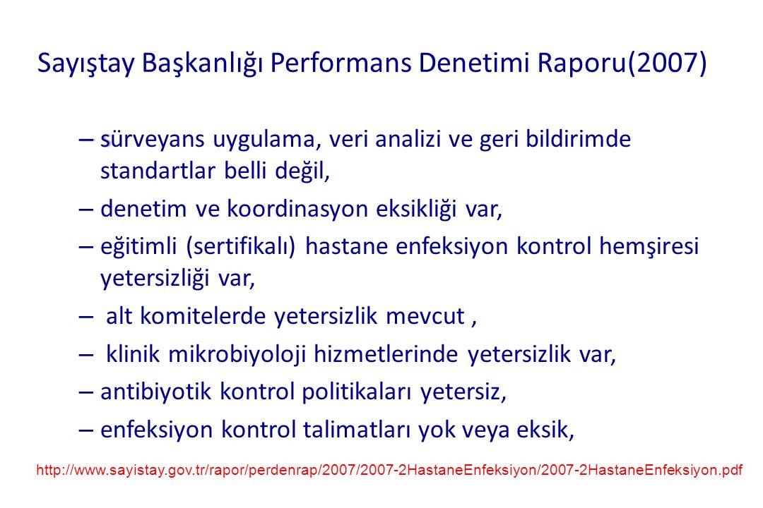 Sayıştay Başkanlığı Performans Denetimi Raporu(2007)