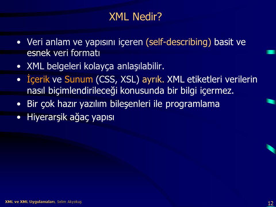 XML Nedir Veri anlam ve yapısını içeren (self-describing) basit ve esnek veri formatı. XML belgeleri kolayça anlaşılabilir.
