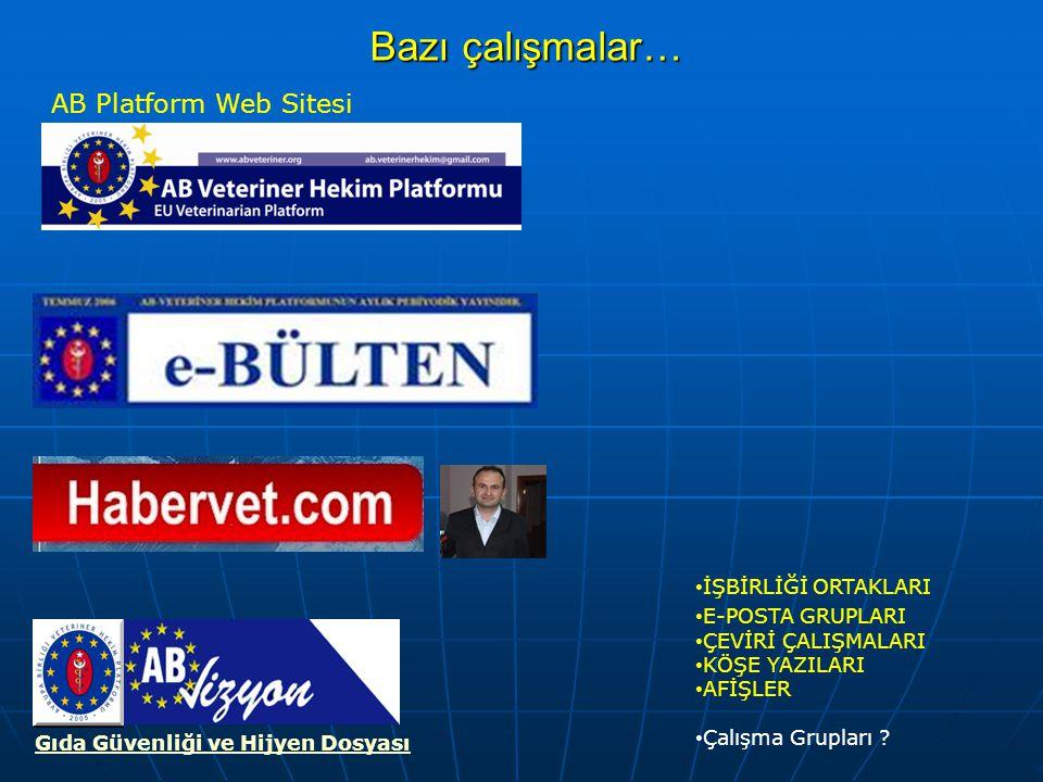 Bazı çalışmalar… AB Platform Web Sitesi İŞBİRLİĞİ ORTAKLARI