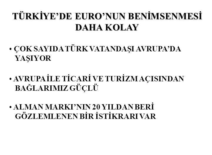 TÜRKİYE'DE EURO'NUN BENİMSENMESİ DAHA KOLAY